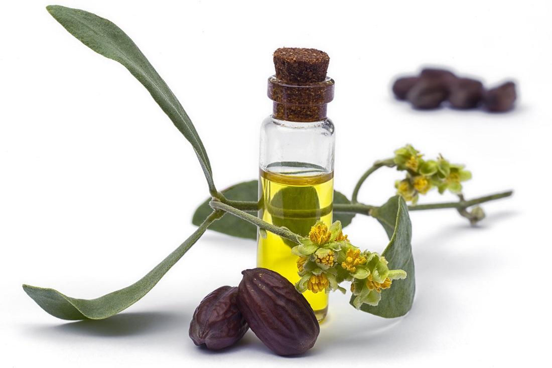 ホホバオイル(ホホバ油・ホホバ種子油)』化粧品成分・効果 説明 地の塩社